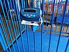 Весы для взвешивания животных VTP-G-1020 1000×2000 мм с оградкой 1500 мм, фото 4