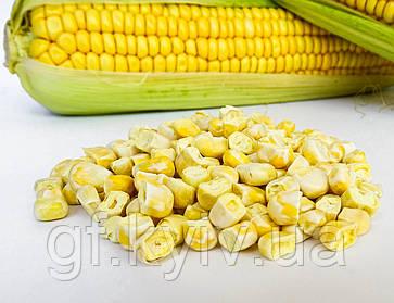 Такую кукурузу вы еще не пробовали!