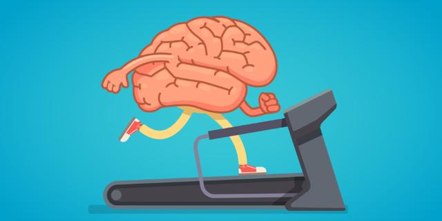 Brain Actives