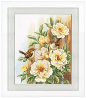 """Набор для вышивания крестом """" Птицы на розах"""""""