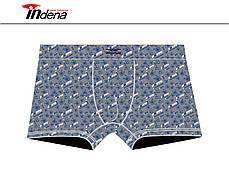 Подростковые стрейчевые трусы шорты на мальчика Марка «INDENA» арт.95528, фото 3