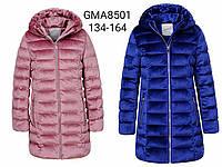 Курточка на хутрі для дівчаток Glo-Story оптом, 134-164 рр. Артикул: GMA8501, фото 1
