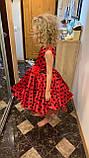 Платье Леди Баг, Костюм леди Баг, Платье Божья Коровка, Стиляги на рост 98-152 см, фото 7