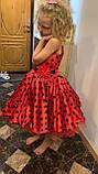Платье Леди Баг, Костюм леди Баг, Платье Божья Коровка, Стиляги на рост 98-152 см, фото 10