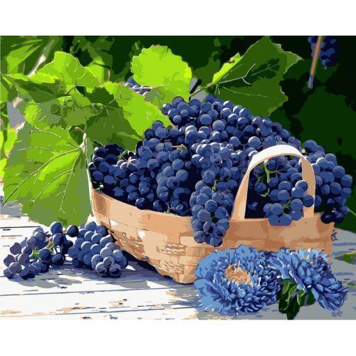 "Картина по номерам ""Виноград в корзине"" ★★★★ КНО5579"