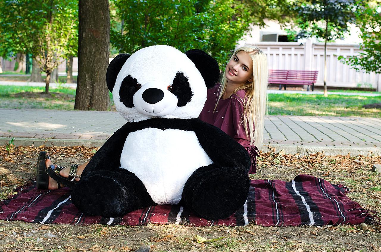 Плюшевая Панда 140 см
