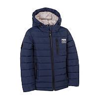 """Куртка для мальчика, арт. 11-ВМ-19, возраст от 5 до 8 лет. Размер: 110. т.синий. TM """"ЭВОЛЮШН (GOLDY)"""" 11-ВМ-19. Украина."""