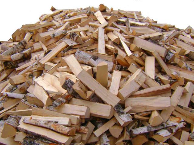 Лес рубят - Киевщина горит!