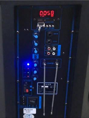 Акустична портативна колонка комбік Temeisheng SL-1204 | Два мікрофони, Bluetooth, USB, фото 2