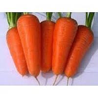 """Морковь """"Ред Кор"""" 1000 г.  Нунемс, (Nunhems)"""