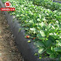 Плівка для мульчування Sotrafa, перфорація 30*25 см (Іспанія), фото 3