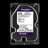 Жесткий диск Western Digital 2TB Purple