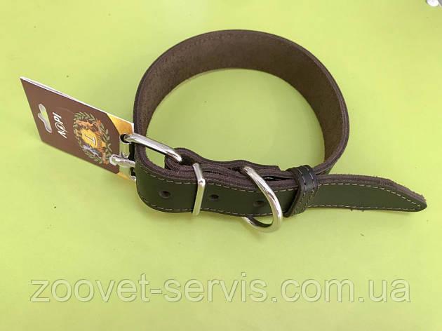 Ошейник для собак кожаный Весна 3,0 коричневый, фото 2