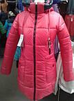 Добавлен новый ассортимент очень теплых женских зимних курток по привлекательным ценам от 500 грн.