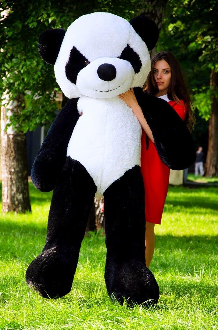 Плюшевая Панда 200 см