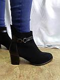 Демисезонные классические замшевые ботинки Romax, фото 3