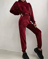 Жіночий костюм стильний з велюру з укороченою кофтою (Норма), фото 2