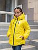 Демисезонная куртка для девочек от производителя  32-42  синий, фото 4