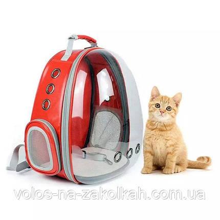 Сумка переноска для домашних животных питомцев сумка портфель рюкзак для котов собак, фото 2