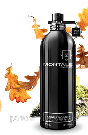 Парфюмированная вода унисекс Montale Aromatic Lime 100ml(test)