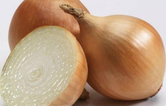 Озима пшениця цибуля саджанка (сівок, тиканка) Купідо, 1 кг, фото 2