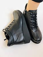 Жіночі черевики. На середній танкетці. Натуральна шкіра.Висока якість.Туреччина.Аlvito. Р. 37,38,39,41., фото 10