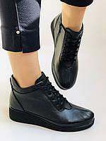 Жіночі черевики. На середній танкетці. Натуральна шкіра.Висока якість.Туреччина.Аlvito. Р. 37,38,39,41., фото 2