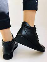 Жіночі черевики. На середній танкетці. Натуральна шкіра.Висока якість.Туреччина.Аlvito. Р. 37,38,39,41., фото 5