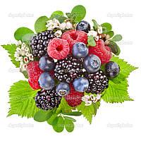 Джем лесные ягоды гофроящик 10 кг