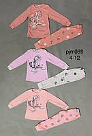 Пижама для девочек оптом, Setty Koop, 4-12 лет,  № PJM089