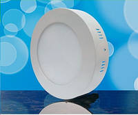 Светильник светодиодный Biom W-R13 W 13Вт накладной круглый белый