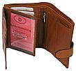 Набор мужской, кошелёк и ремень кожаный  Always Wild Buffalo (PSB-D1072-01-GG) Коричневый, фото 4
