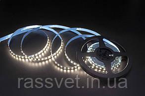 LED лента Skarlat LED LV-2835-120 4000K