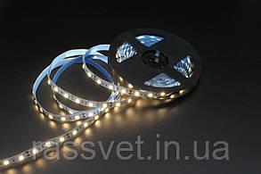 LED лента Skarlat LED LV-5050-60 4000K