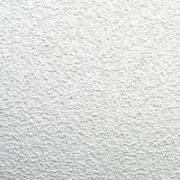 Стельова плита OASIS (Армстронг Оазис), 600х600х12 мм