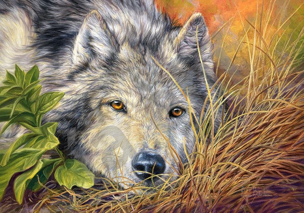 Пазлы на 500 элементов (47 х 33 см) Волк (животные) (Castorland, Польша)