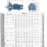 Центробежный промышленный электронасос Pedrollo F4-100/200C, фото 4