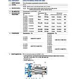 Центробежный промышленный электронасос Pedrollo F4-100/200C, фото 5