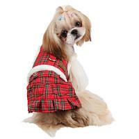 Жилет с юбкой Pinkaholic Trinity1 для собаки, красный, S AH525_RED_S