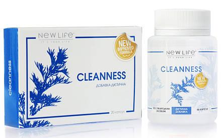 Cleanness (Чистота) капсулы - сильное антипаразитарное средство, улучшает желчевыделение и пищеварение, фото 2