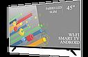 "Функціональний телевізор Ergo 45"" Smart-TV/Full HD/DVB-T2/USB (1920×1080) Android 7.0, фото 2"
