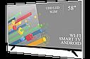 """Функциональный телевизор Ergo  58"""" Smart-TV/DVB-T2/USB (1920×1080) Android 7.0 4К/UHD, фото 2"""