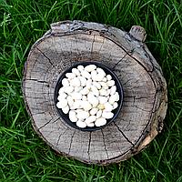Фасоль белая (крупная) ОПТ, фото 1