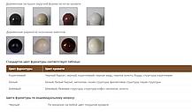 Кровать Адель белый бархат 120*190 (Металл дизайн), фото 3