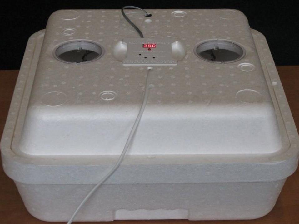 Домашний инкубатор Веселое Семейство (80 яиц, ручной переворот)