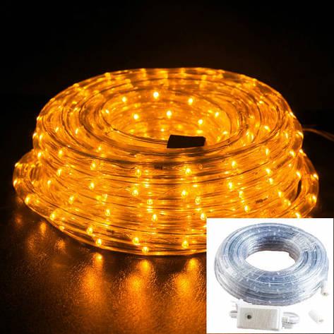 Уличный Дюралайт светодиодный Led гирлянда 50 м золото с переходником, фото 2