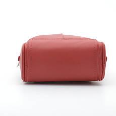 Рюкзак David Jones CM5433T/CM5713T red, фото 3