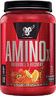 БЦАА BSN BCAA Amino X (1,01 кг) бсн амино икс х strawberry orange