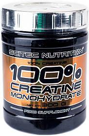 Креатин моногидрат Scitec Nutrition 100% Creatine Monohydrate (300 г) скайтек нутришн unflavored