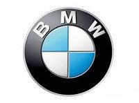 Передняя защита BMW